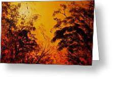 Morning Canopy Greeting Card