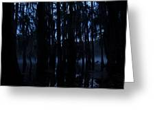 Morning Cypress Mist Greeting Card