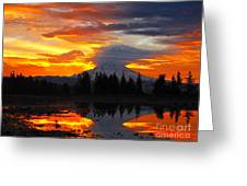 Morning Explosion Greeting Card