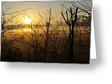 Morning Fields Of Houma Greeting Card