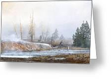 Morning Fog At Black Sand Basin Greeting Card