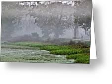 Morning Fog At Brazos Bend Greeting Card