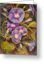 Morning Glories Greeting Card by Bill Meeker