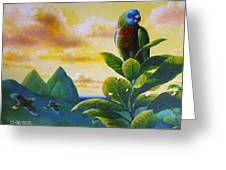 Morning Glory - St. Lucia Parrots Greeting Card