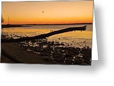 Morning Glow #2 Greeting Card
