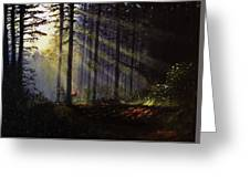 Morning Glow In The Forest Greeting Card