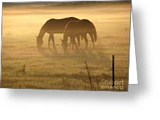 Morning Grazing Greeting Card