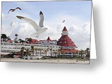 Morning Gulls On Coronado Greeting Card
