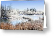 Morning Hoar Frost Greeting Card