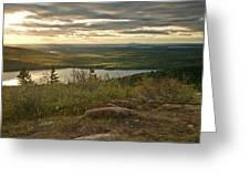 Morning In Acadia Greeting Card