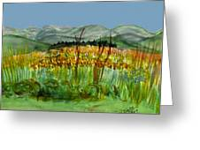 Morning In Backyard At Barton Greeting Card