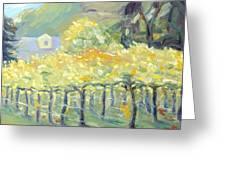Morning In Napa Valley Greeting Card by Barbara Anna Knauf