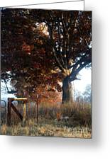 Morning In Tennessee Greeting Card