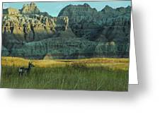 Morning In The Badlands Greeting Card