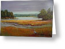 Morning In The Salt Marsh Greeting Card