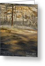 Morning Light On  Mammoth Terrace Greeting Card