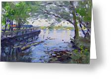 Morning Light By The River Greeting Card