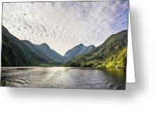 Morning Light Hitting The Docks At Doubtful Sound In New Zealand Greeting Card