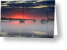 Morning Mist - Florida Sunrise Greeting Card