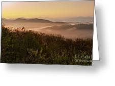 Morning Mist Three Greeting Card