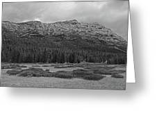 Morning Mountains In Yellowstone Greeting Card