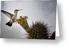 Morning Nectar  Greeting Card