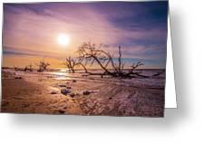 Morning On Boneyard Beach Greeting Card