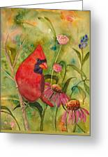 Morning Perch In Red Greeting Card