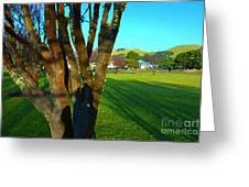 Morning Shadows In Waimea Greeting Card