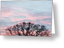 Morning Sky 2 Greeting Card