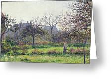 Morning Sun Greeting Card by Camille Pissarro