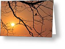 Morning Sunrise Greeting Card