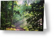 Morning Sunshine On The Appalachian Trail Greeting Card