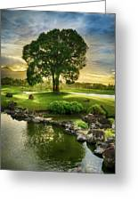 Morning Tree Greeting Card