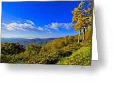 Early Fall Morning View Greeting Card