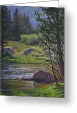 Morning View- Rock Creek Greeting Card