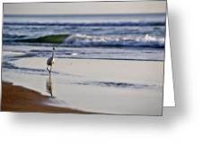 Morning Walk At Ormond Beach Greeting Card