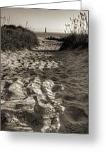 Morris Island Lighthouse Pathway Greeting Card
