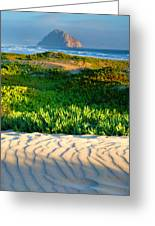 Morro Rock And Beach IIi Greeting Card by Steven Ainsworth