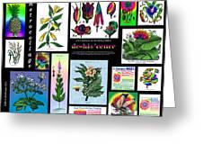 Mosaic Of Retrocollage II Greeting Card