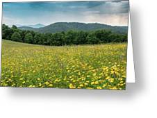 Moses Cone Meadow Greeting Card