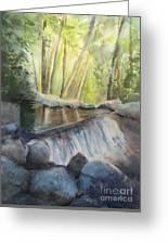 Mosquito Creek 3 Greeting Card