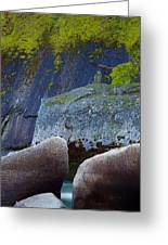 Moss And Rocks Greeting Card by John Daly