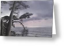 Moss Beach Greeting Card