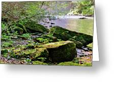Moss Covered Boulders Greeting Card