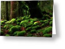 Moss Covered Rocks And Tree Yosemite Np California Greeting Card