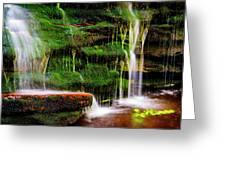 Moss Falls - 2981-2 Greeting Card