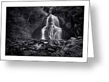 Moss Glen Falls - Monochrome Greeting Card