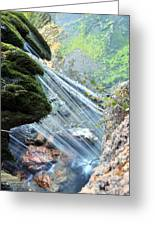 Moss On Waterfall True Color Greeting Card