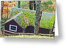 Moss Roof Greeting Card